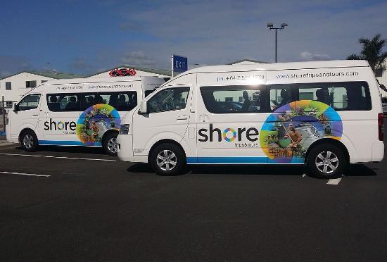 Mount Maunganui, New Zealand: New fleet of mini vans