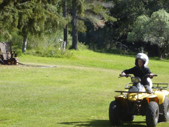 Quad Explore Nature Trails: 11 year old on a 150cc semi auto geared quad bike