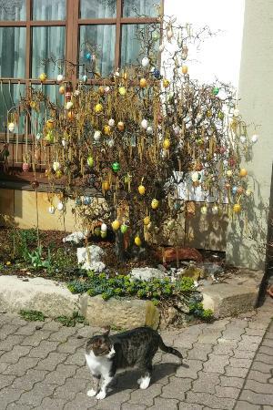 Memmelsdorf, Alemania: Höhn's Easter Tree with Welcoming Katze