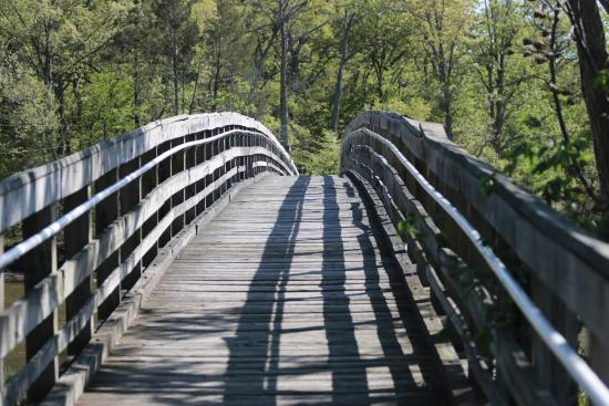 Marbury, MD: Bridge over marsh, leading to hiking trail