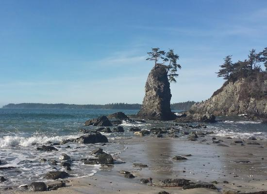 Brady's Beach (Bamfield) - All You Need to Know Before You ...