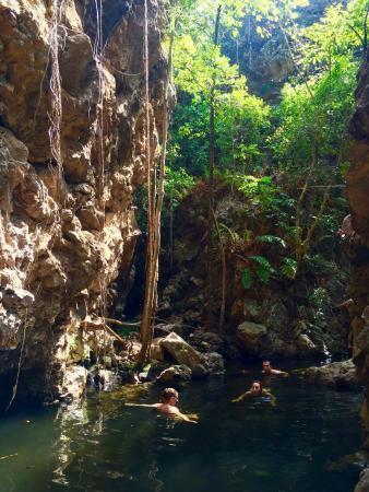 Kakadu Dreams Day Tours: received_1016336465069348_large.jpg