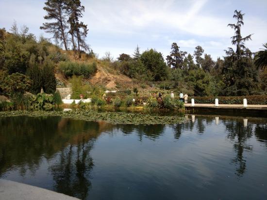 Foto de jard n botanico nacional vi a del mar jardin for Jardin botanico vina