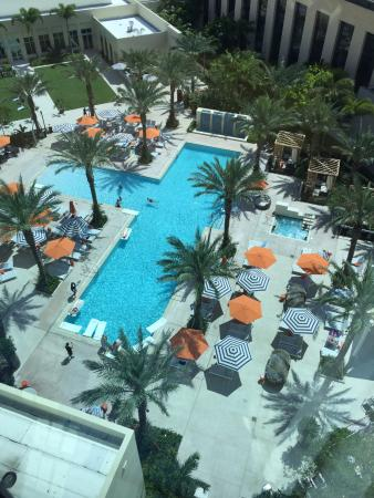 Pool View From 9th Floor Picture Of Hilton West Palm Beach