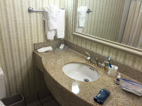 Hilton Garden Inn Atlanta Northpoint Foto