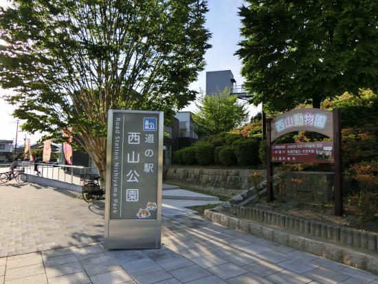 Sabae, Ιαπωνία: すぐ裏の西山公園にも立ち寄るのがオススメ