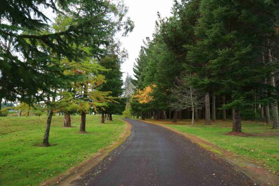 Turangi, Nieuw-Zeeland: Lodge grounds