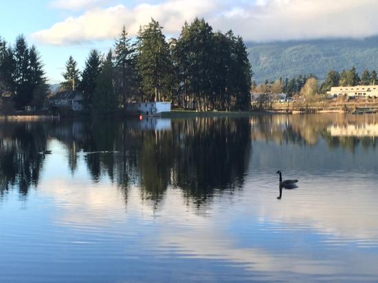 Morning of Long Lake Waterfront B&B