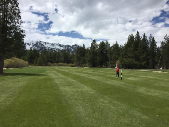 Lake Tahoe Golf Course: A forest meadow feeling on the 7th fairway.