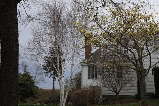 Fort Hill Bed and Breakfast: View towards main house and seashore