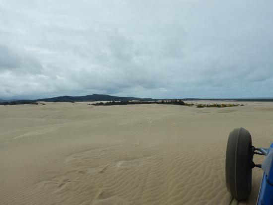 Florence, Oregón: On the dunes, note the special tire.