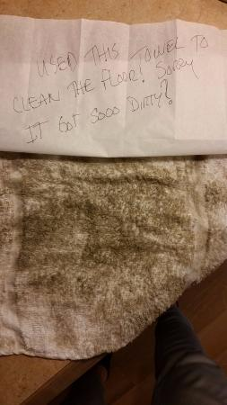 Red Roof Inn Detroit Plymouth : Floor cleaning towel