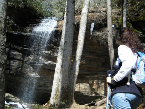 Brevard, North Carolina: Moore Cove Pisgah National Forest