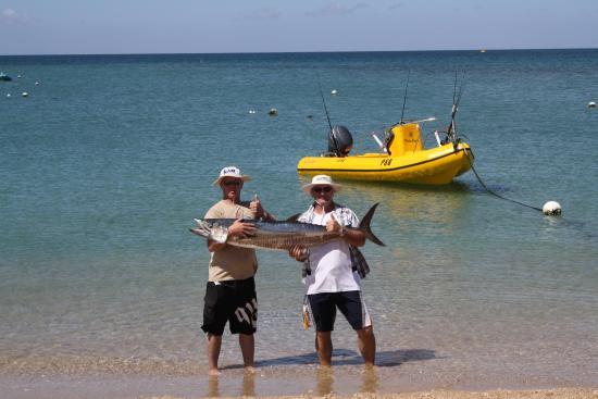 Thevenard Island, Australia: The fish are huge here!