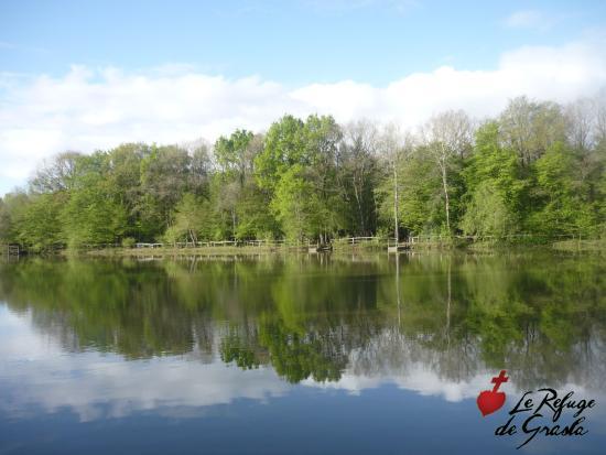 Les Brouzils, France : Détendez-vous grâce à une atmosphère verdoyante !