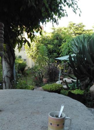 Hotel Manoir Rouge: Petit déjeuner au calme dans ce magnifique jardin