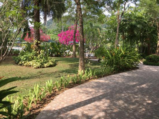 Duangjitt Resort & Spa Photo