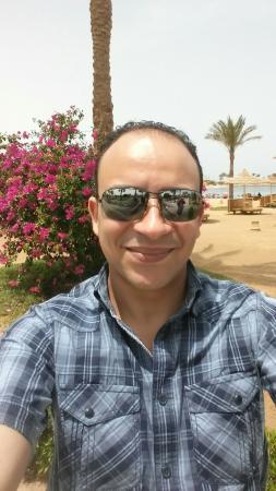 Desert Rose Resort Photo