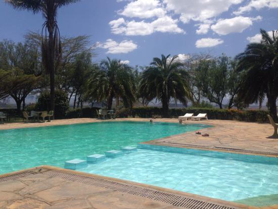 Lake Elementaita, Quênia: Swimming pool
