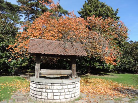Le puits de l 39 amour et ses couleurs d 39 automne picture of - L automne et ses couleurs ...