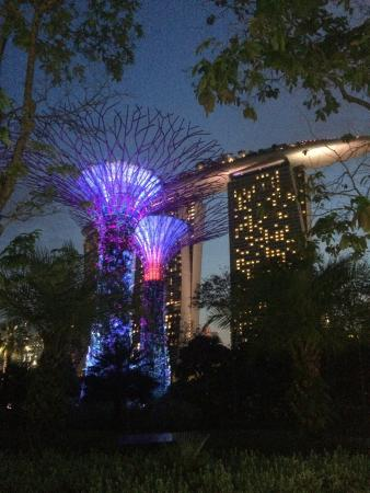 gardens by the bay is a free attraction opened to everyone i brought my mom