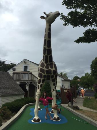 Wild Animal Lagoon: My kids enjoyed it!