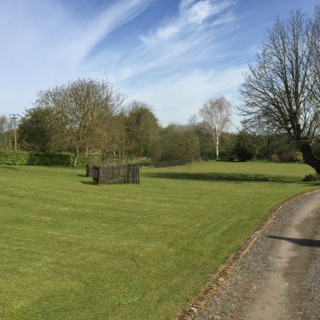 Friars Farm: The front garden with zip wire.