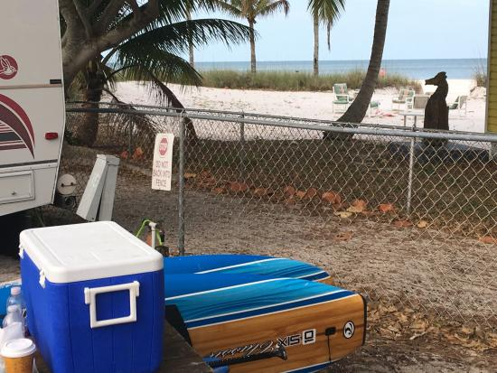 Red Coconut RV Park Photo