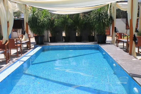 Nirvana Boutique Hotel Mahabalipuram Indien Omd Men Och Prisj Mf Relse Tripadvisor