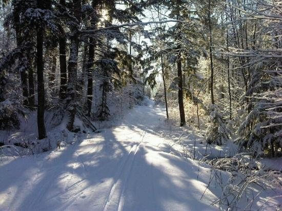 North Bay Nordic Ski Club