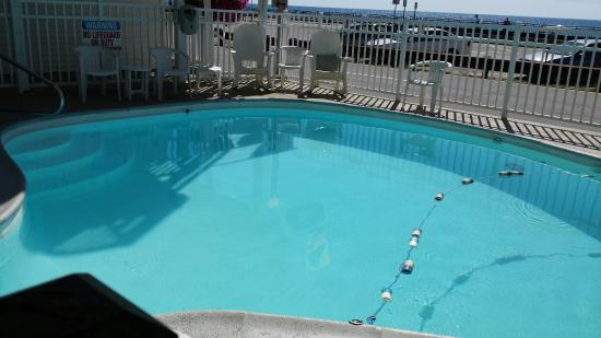 Atlantic Motel: We had a wonderful week last year and it's Pet Friendly!  Clean room. Will be going again this y