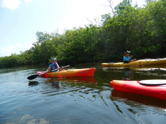 Karen's Kayaks : Turkey Creek May 2016