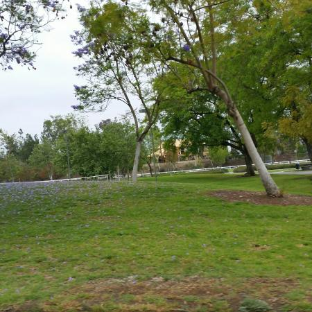 Jessamyn West Park