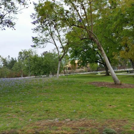 Yorba Linda, CA: 20160504_163954_large.jpg