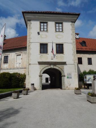 Metlika, castle and museum