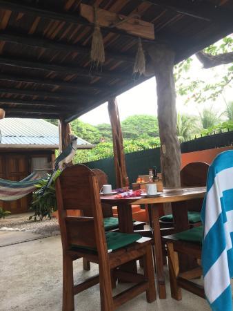 Samara Tree House Inn: photo0.jpg