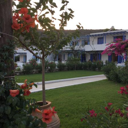 Studios Nikos: Nice garden!!!