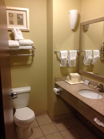 Comfort Suites Airport South : Clean, well stocked bathroom.