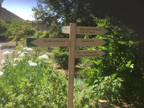 Conejo Valley Botanic Garden: which path should we take--they all end up back here eventually