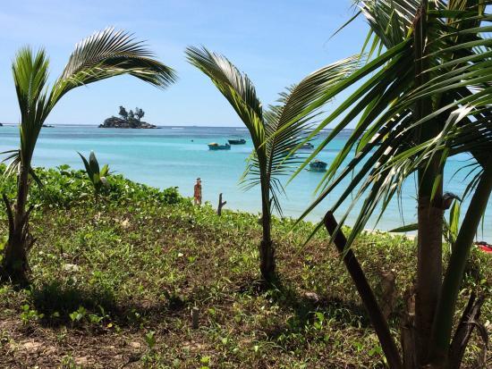 Anse Royale, Seychellene: It is really on the beach