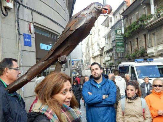 Provincia de Pontevedra, España: Loro rabachol.simbolo de la ciudad
