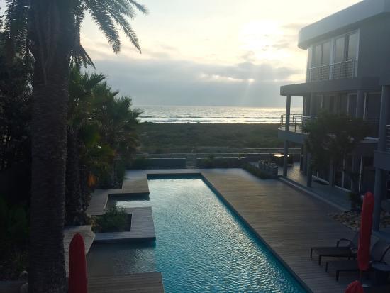 Atlantic Palms: View!