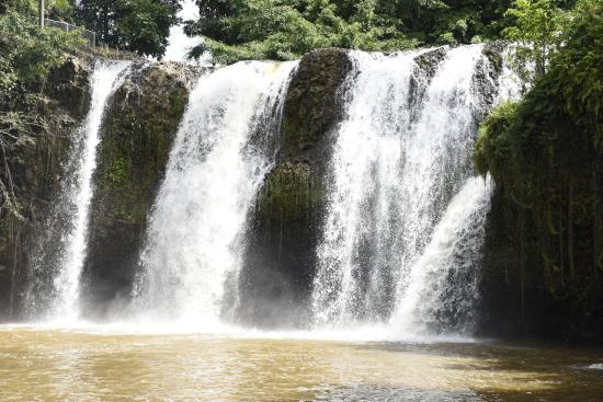 Mena Creek, أستراليا: Water Fall