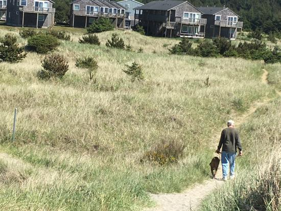 Long Beach, WA: Dunes with townhouse rooms in background.