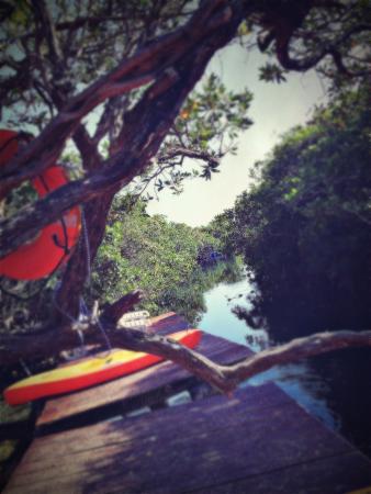My Tulum Cabanas: photo9.jpg