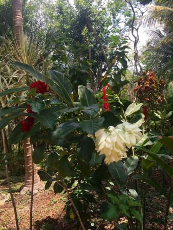 Chichen Itza, Mexico: photo2.jpg