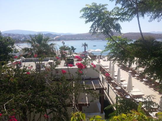 Turihan Hotel: Utsikt fra rom i 3.etg utvendig mot Gumbet bukta