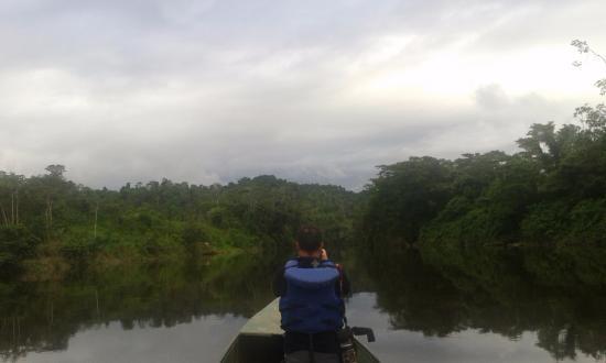 Zamora-Chinchipe Province, Ecuador: Boat trip, Birding Trip in Zamora Chinchipe Province, Nangaritza River. basin Amazon