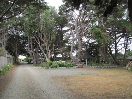 Mendocino Seaside Cottage: The driveway to Cottage