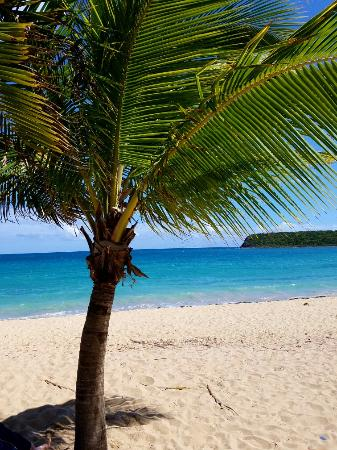 Awesome trip in April 2016.  We loved Vieques and Great Escape <3